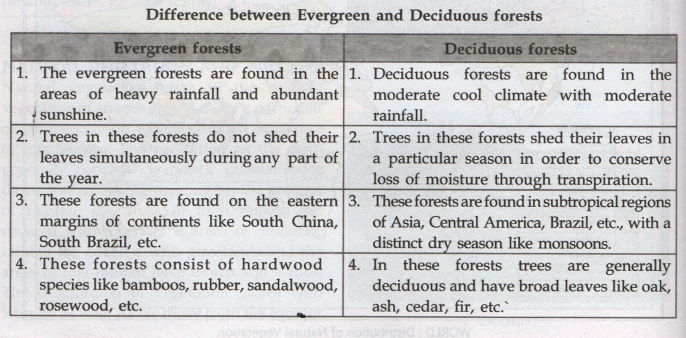the difference between deciduous and coniferous trees Introduction to the trees of the boreal forest or taiga what is the boreal forest what is the difference between the taiga and the mixed coniferous.