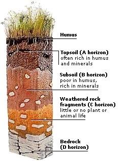 Desert Soil Diagrams - Wiring Circuit •