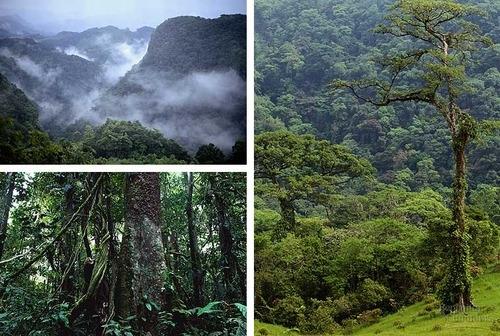 six natural regions of india