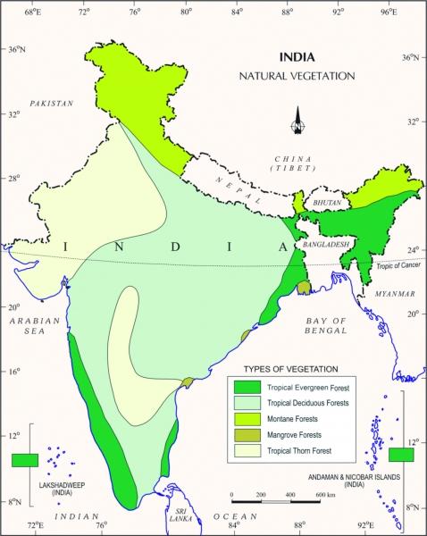 vegetation on map of india 0 o